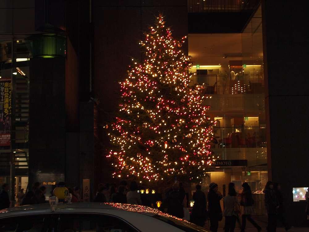 10.11.18撮影 銀座ミキモトのクリスマスツリー