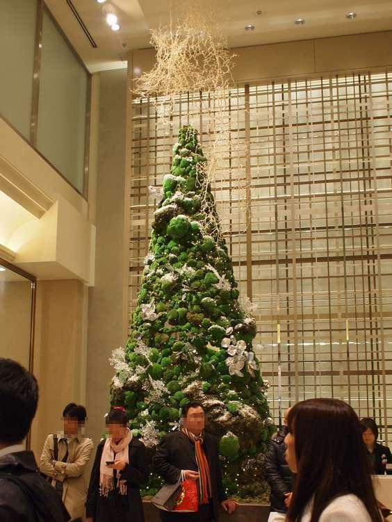 10.12.24撮影 銀座三越のクリスマスツリー